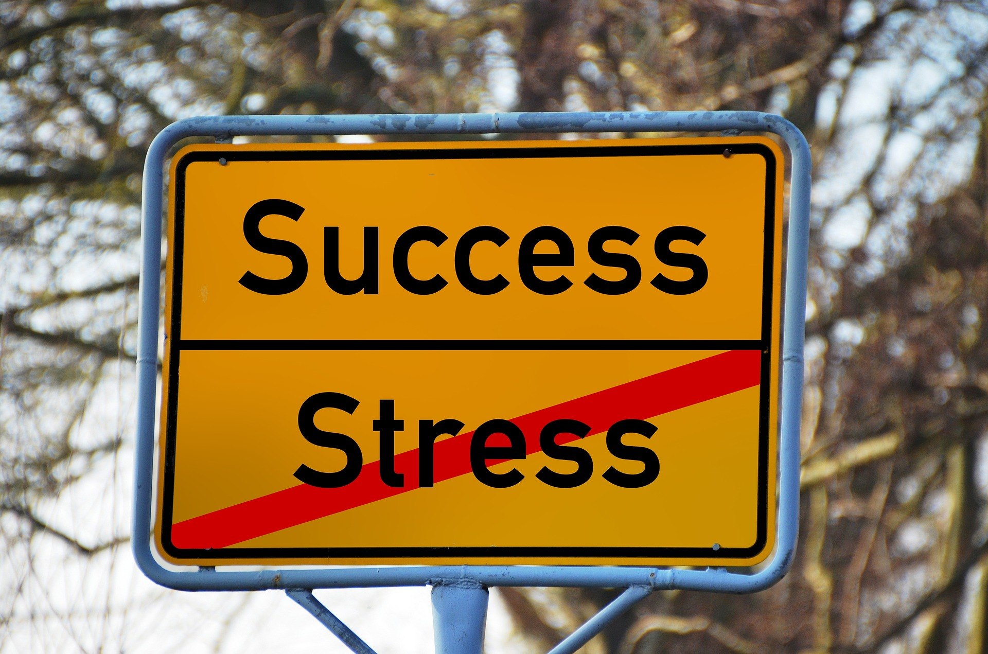 How to Build a Business Stress Free?